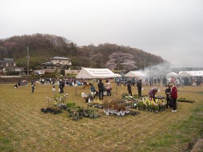 100409sakura3.jpg